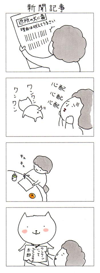 犬との日常 in 京都