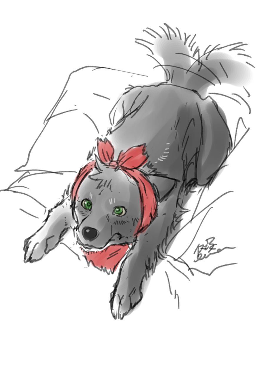 【特別なイヌ】ラスト