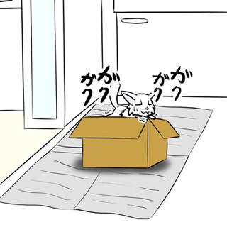 ミーのおもちゃ箱 第1059話~第1064話
