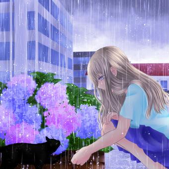 梅雨、黒猫と紫陽花と女の子