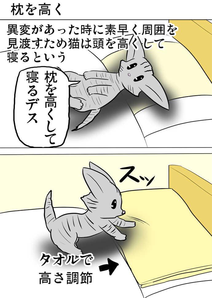 ミーのおもちゃ箱358話