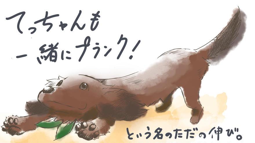 犬とリングフィットアドベンチャー②