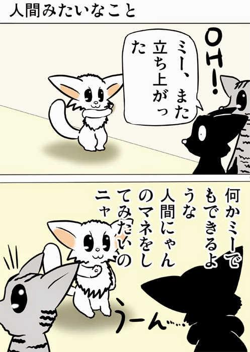 ミーのおもちゃ箱153話