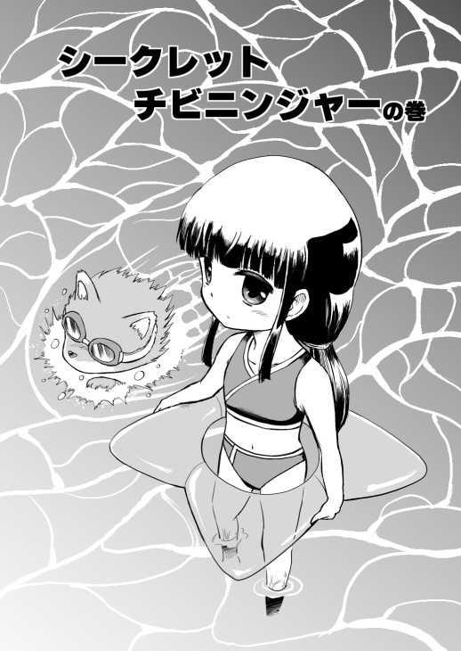 第10話 シークレットチビニンジャー の巻