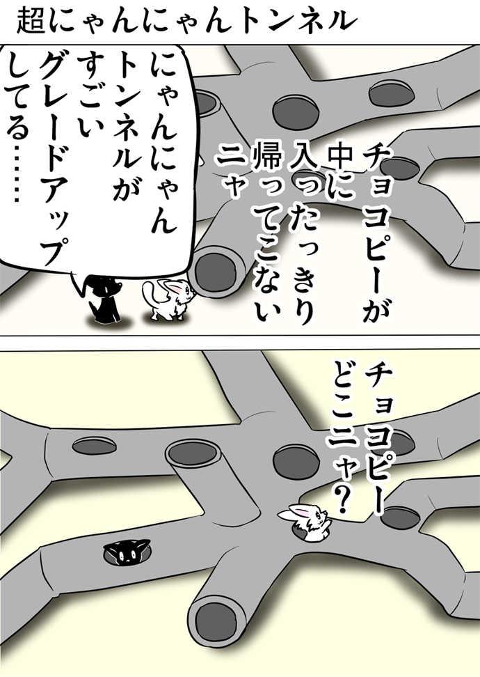 ミーのおもちゃ箱494話