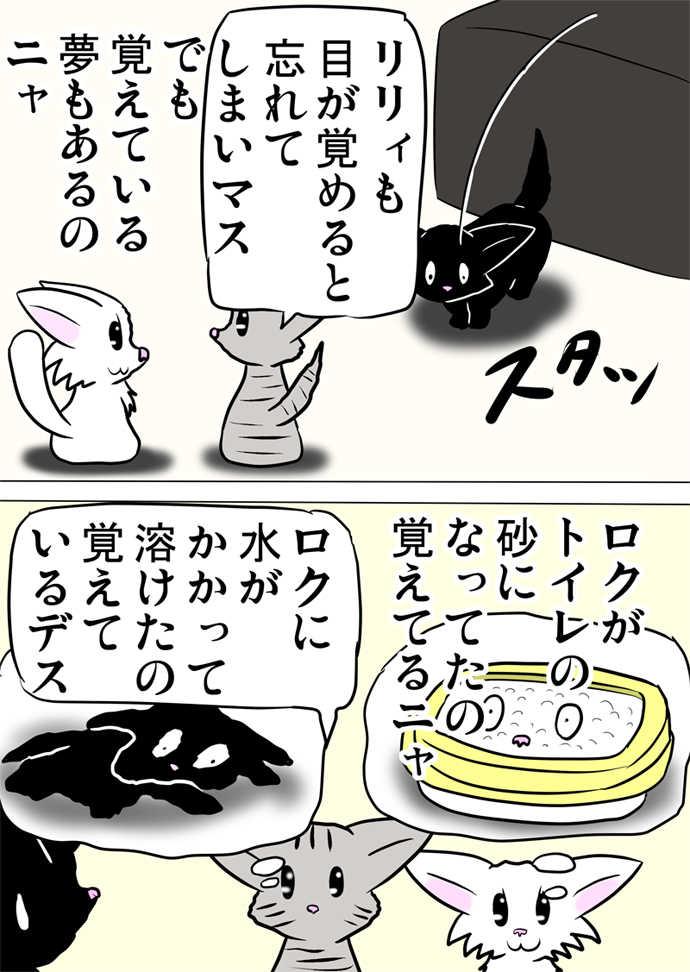 ミーのおもちゃ箱451話