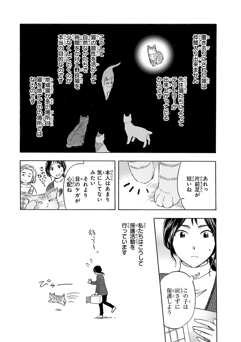 「命の架け橋-TNRと保護活動-」(著者:胡原おみ)