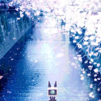 ヒラリヒラヒラ桜水道