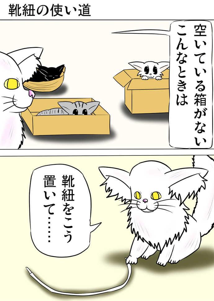 ミーのおもちゃ箱222話
