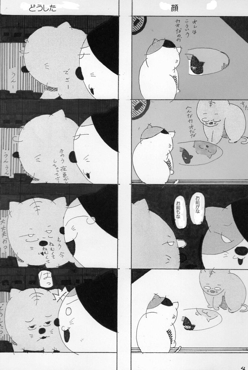 ネコたちの日常