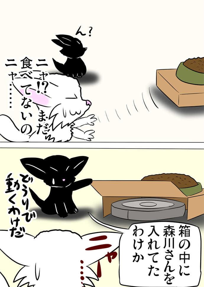 ミーのおもちゃ箱382話