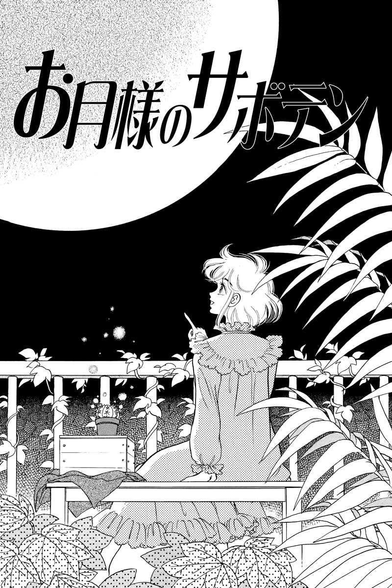 お月様のサボテン