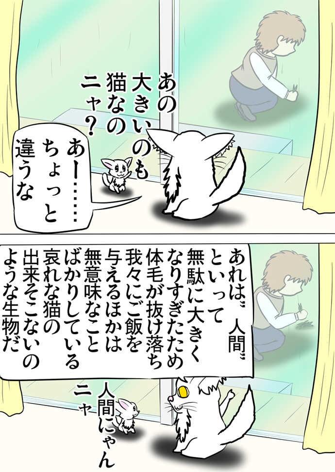 ミーのおもちゃ箱739話~第744話