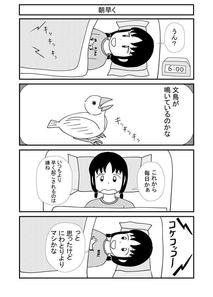 第13話 小鳥