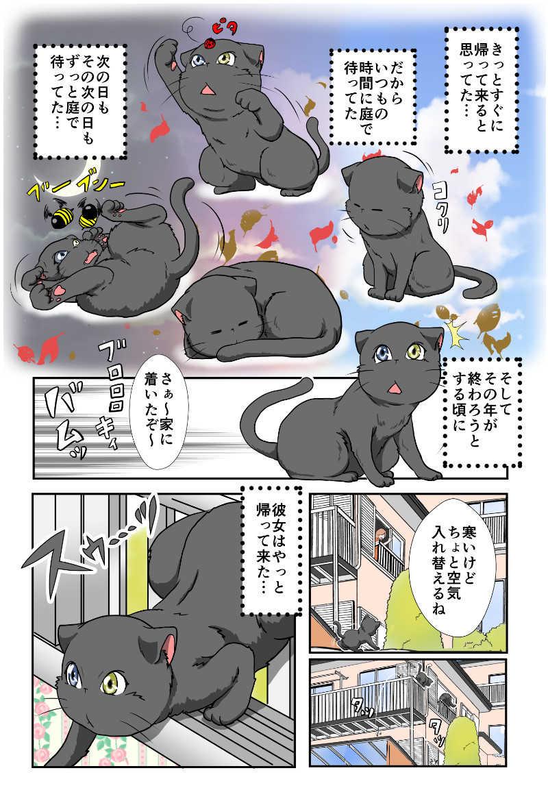 4話 野良猫の過去
