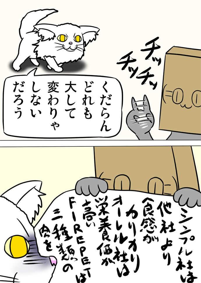 ミーのおもちゃ箱490話