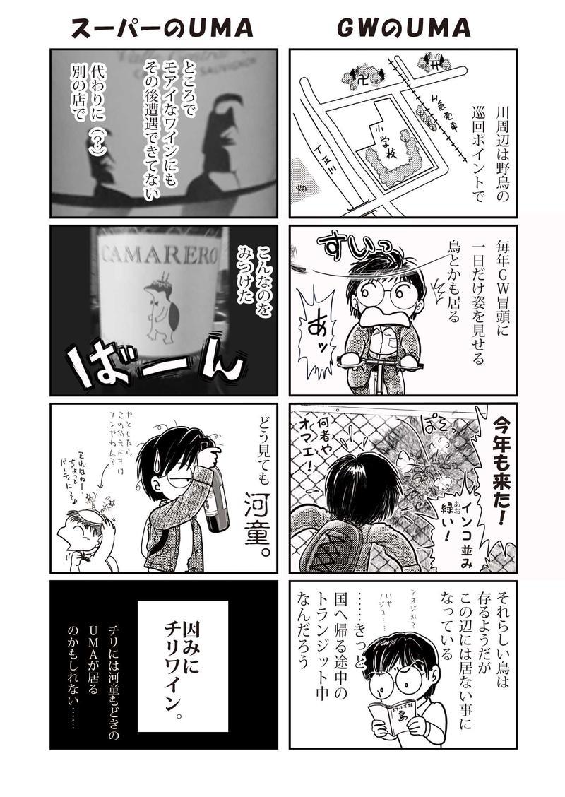 5月の日記②/ご近所UMA