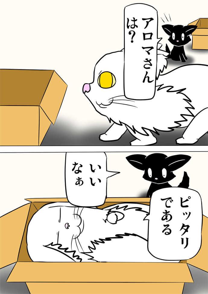 ミーのおもちゃ箱751話~第756話
